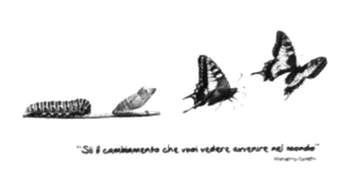 corso-ginnastica-armonia